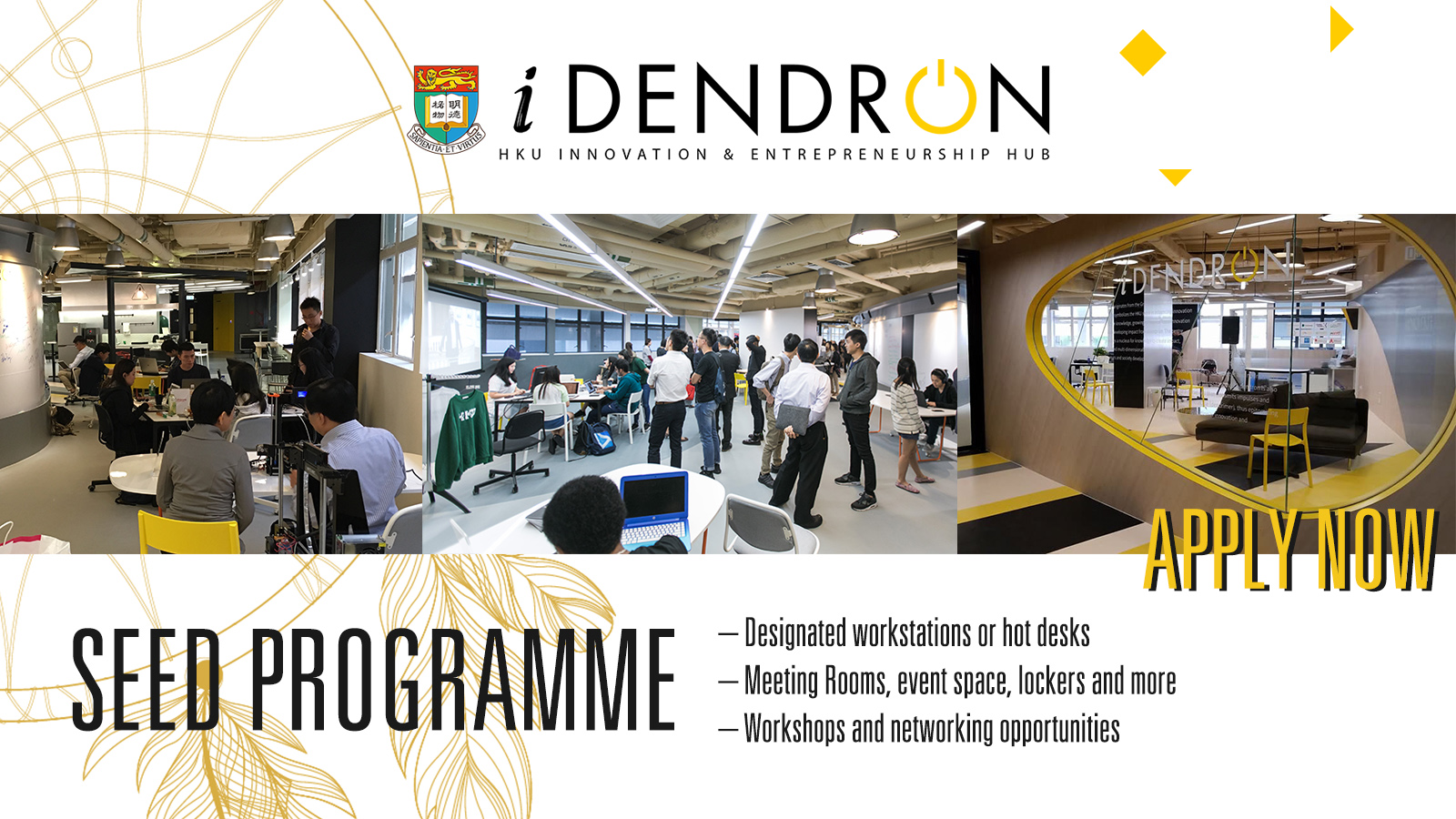 iDendron Seed Programme Application